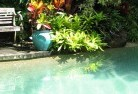 Agnes Water Swimming pool landscaping 3